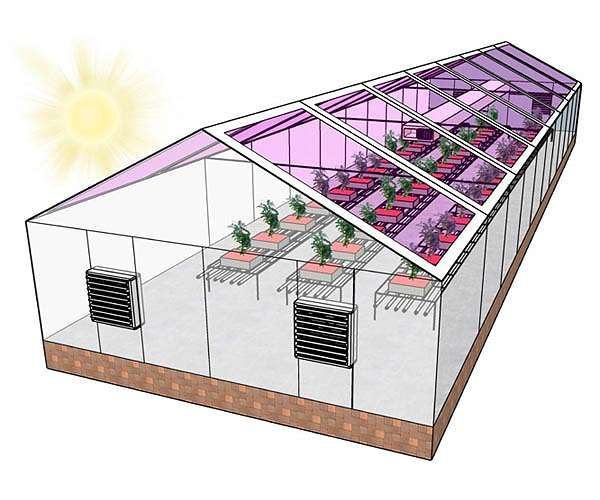 Future generation of greenhouses might be completely solar energy